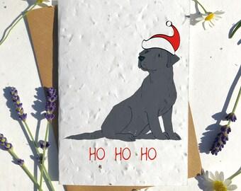 Biodegradable seed paper Christmas festive season greetings card traditional black labrador