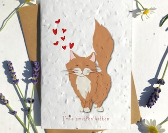 1 x Eco-Friendly Biodegradable Seed Paper plantable Valentine's and Anniversary Card adorable cute ginger ragdol cat