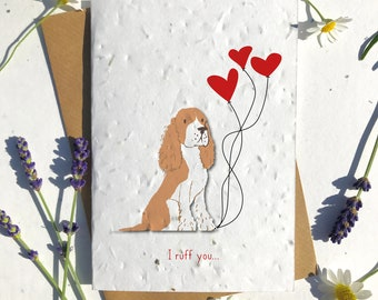 1 x Eco-Friendly Biodegradable Seed Paper plantable Valentine's and Anniversary Card adorable cute light brown white border collie