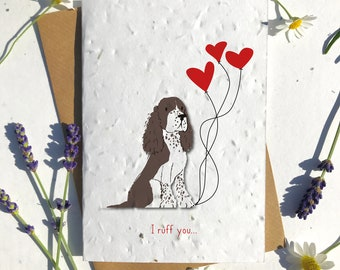 1 x Eco-Friendly Biodegradable Seed Paper plantable Valentine's and Anniversary Card adorable cute brown white border collie