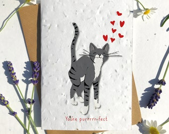 1 x Eco-Friendly Biodegradable Seed Paper plantable Valentine's and Anniversary Card adorable cute black short haired cat