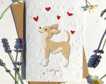 1 x Eco-Friendly Biodegradable Seed Paper plantable Valentine's and Anniversary Card adorable cute light brown chihuahua dog