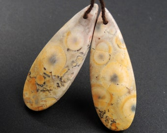 Natural Galaxy Jasper Earring Pair Teardrop Cabochon Cab Pair Drilled Matched Earrings Bead Pair Natural Stone E2733