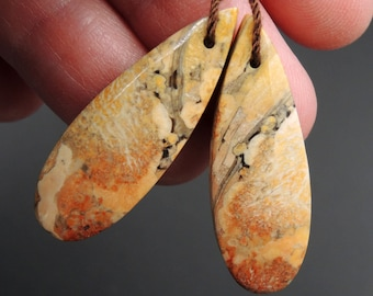 Natural Galaxy Jasper Earring Pair Teardrop Cabochon Cab Pair Drilled Matched Earrings Bead Pair Natural Stone E2724
