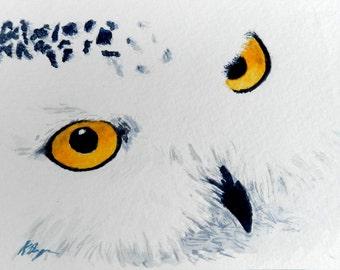 Yellow-eyed Owl, 4x6, Original Watercolor Postcard Painting