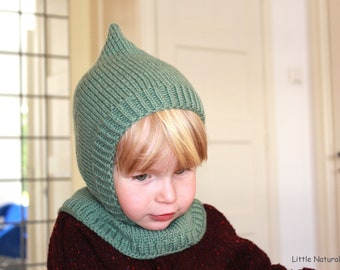 Kids/' Winter Hood Cap  Dino Balaclava Hat for Baby Boy and Girl  Bear Neckhoodie PDF Sewing Pattern  Sizes 44-56 cm