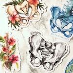 SandySpines Sticker Pack   Anatomy Art