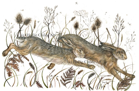 Running hares in Winter meadow 'Marbury Mornings' Limited edition print