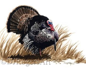 Wild Turkey Art Print - Watercolor Painting - Signed by Artist DJ Rogers - Wildlife - Wall Decor