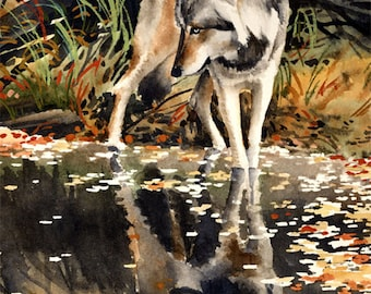 Wolf Reflection - Wolf Art Print - Watercolor Painting - Signed by Artist DJ Rogers - Wildlife - Wall Decor