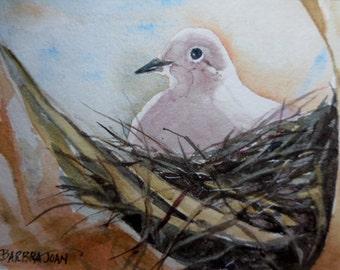 Dove Original watercolor, original w/c, dove painting