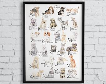 ABC Dog Breeds Alphabet Poster - Original Watercolors