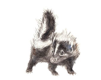 Baby Skunk Limited Edition Print 8.5x11 Watercolor Cute Baby Animal Painting