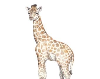 Giraffe Limited Edition Print 8.5x11 Watercolor Cute Safari Baby Animal Painting