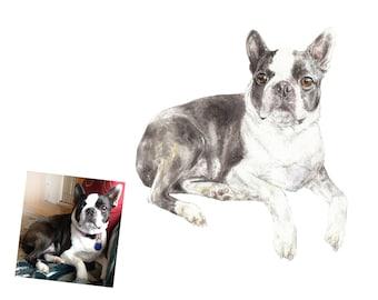 """CUSTOM Watercolor Pet Portrait Original Painting, 9""""x 12"""" and bigger"""