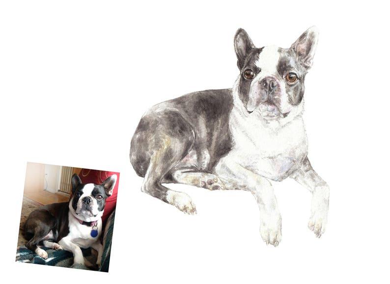 Smaller size 6 x 9 or 7 x 10 CUSTOM Watercolor Pet Portrait Original Painting Dog Cat or Animal