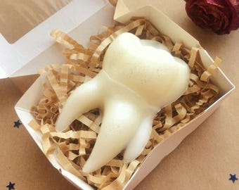 Tooth soap, dentist soap, gift for dentist, teeth soaps, denture soap, chocolate soap, white chocolate soap, jaw soap, teeth soap