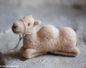 Camel, nativity scene, fa...