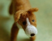 Puppy, wool fairytale ins...