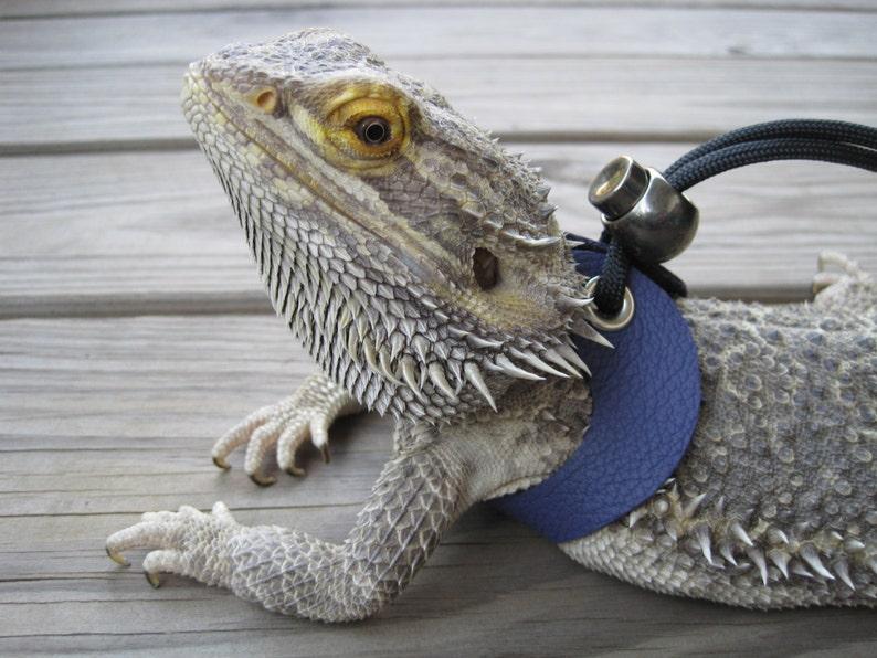 Leather Lizard Harness--Posh Purple