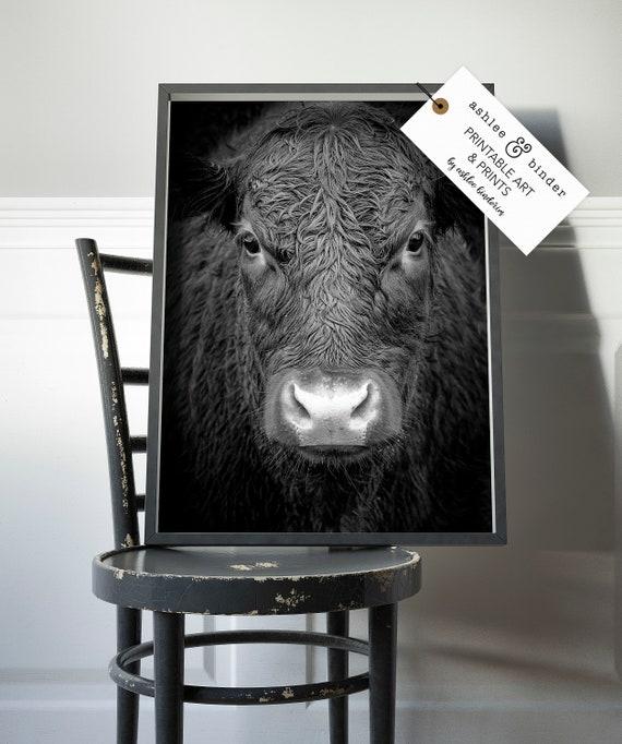 Sensational Highland Cow Print Black And White Farmhouse Decor Shaggy Cow Photo Large Poster Printable Digital Download Rustic Decor Farm Animal Dailytribune Chair Design For Home Dailytribuneorg