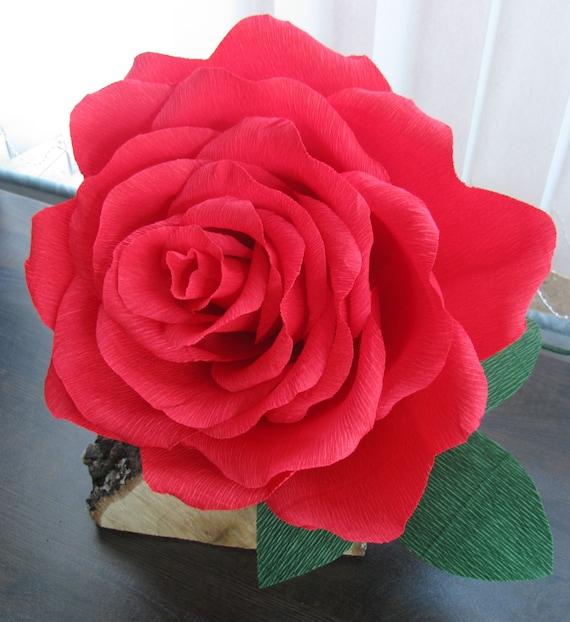 Geante Rouge Papier Fleur En Papier Rose Rouge Grand Papier Etsy