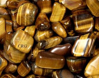 1 LB lot Gold Tigers Eye Extra Quality 20-40 mm Tumbled Gemstones Wholesale Bulk