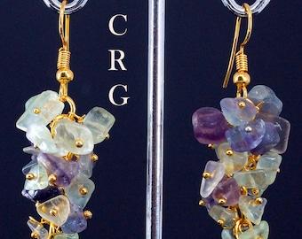 Gold Plated Fluorite Grape Cluster Earrings (GC42DG)