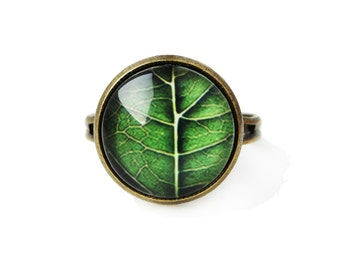 Green leaf - small adjustable ring, 12mm glass dome photo image cabochon, bezel ring statement ring, simple elegant ring, green nature