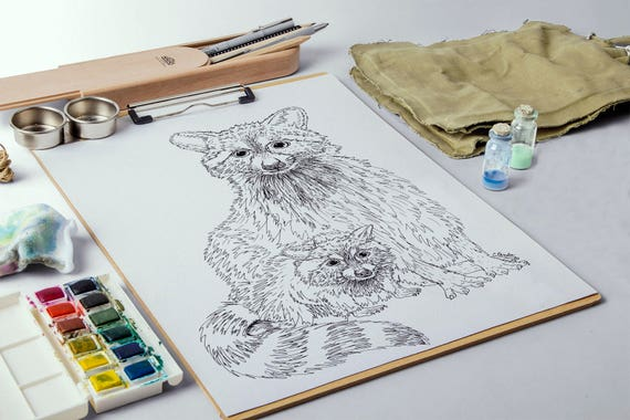 Animal adulto página de mapache para colorear colorear | Etsy