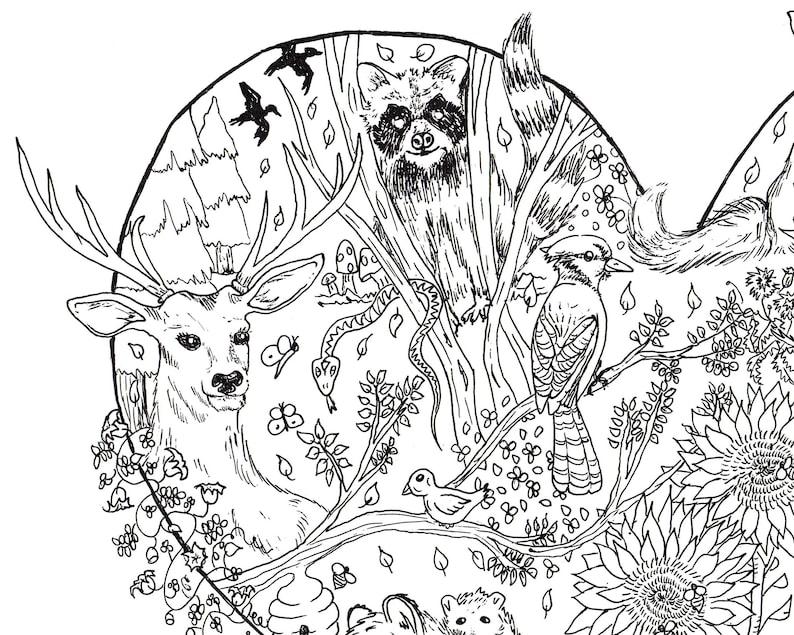 Coloriage Adulte Foret.Foret De Coloriage Coloriage Page Coloriage Adulte Imprimer Coloriage Pages A Colorier Woodland Art Foret Dessin Coloriage