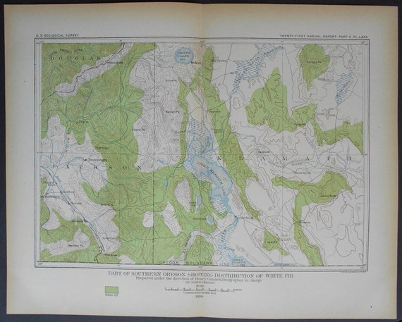 1901 Timber Map of Southern Oregon Border: Upper Klamath Lake and Crater  Lake. Distribution of White Fir. Julius Bien Antique Lithograph
