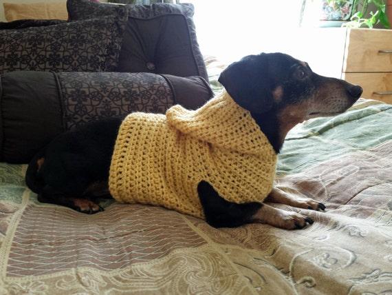 Hooded Dog Dachshund Pull Over Sweater Crochet Pattern Etsy