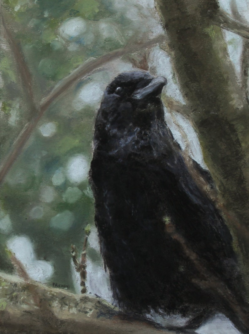 Clever Crow image 0