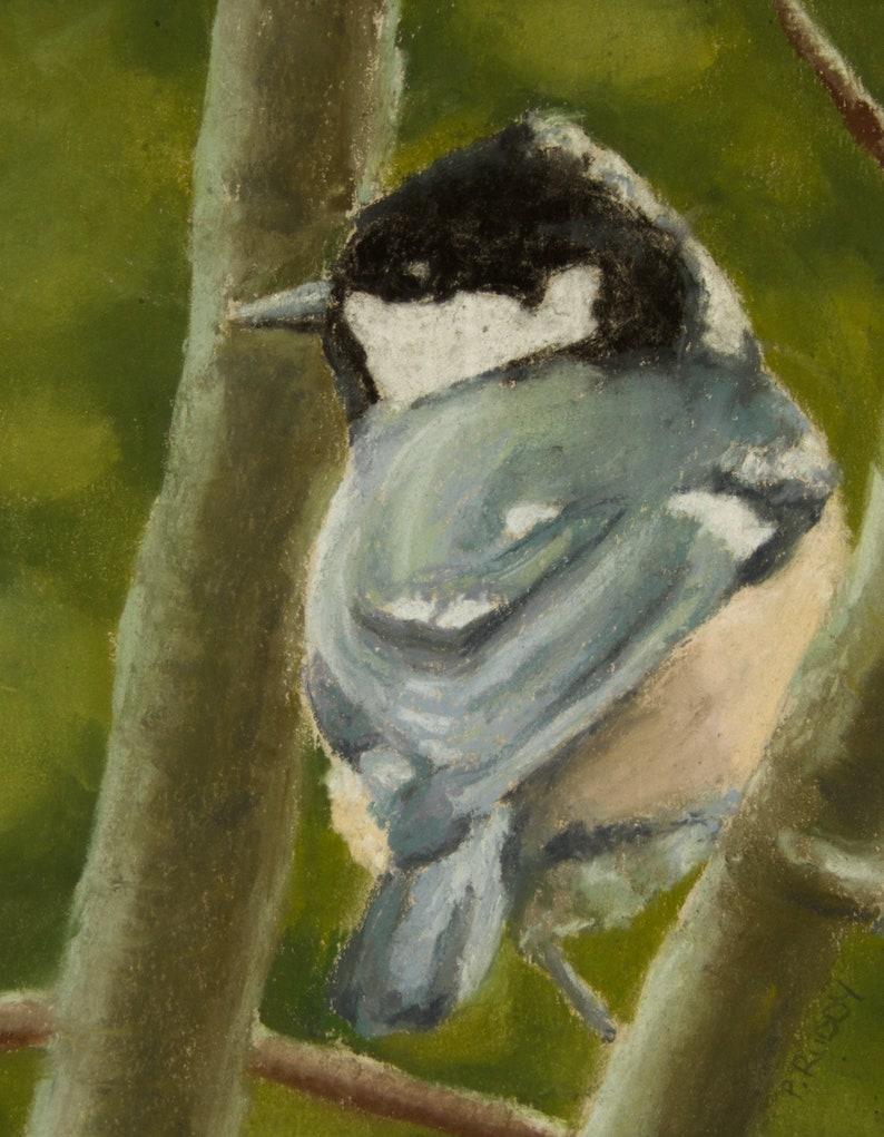 Coal Tit  Garden Bird Wildlife Art an Original Pastel image 0