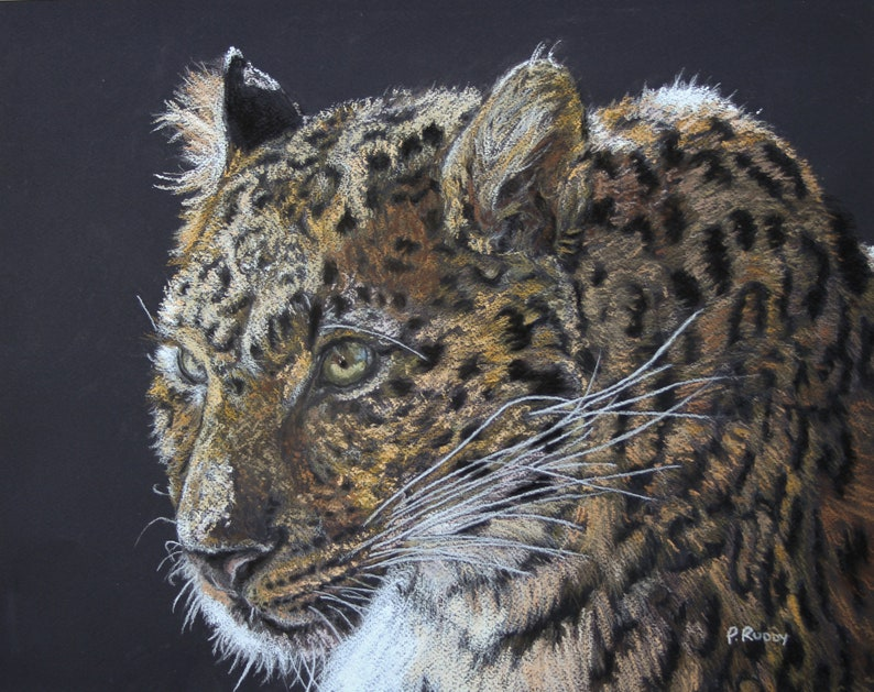 Stalking the Light  an original pastel painting of a Leopard image 0
