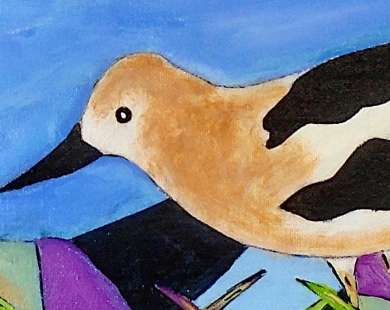 Avocet Painting! (original art)