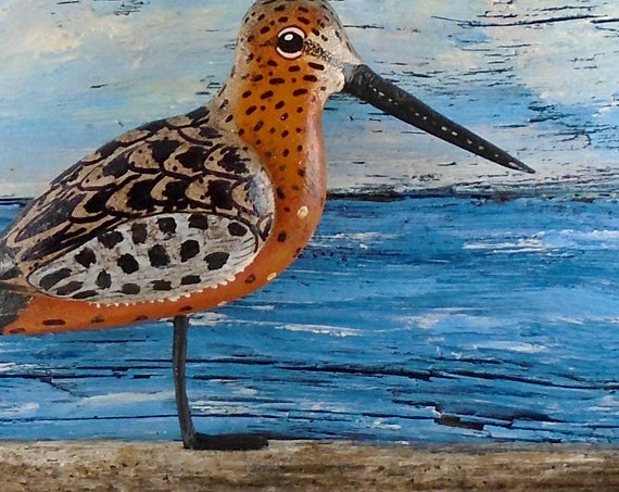 Carved Shorebird on Painted driftwood background
