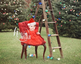 Baby, Child, Family Outdoor Photography Digital Backdrop for Photographers - Winter Christmas Portrait with Nature Trees and Chair - JPG