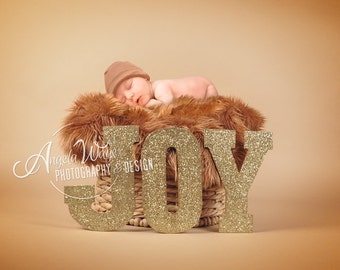 Newborn, Baby, Toddler, Child, Basket Photography Digital Backdrop Prop for Photographers - Gold JOY Letters Background - Fur Coverup Layer