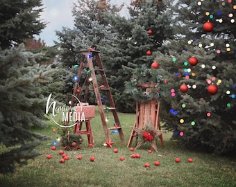 Child, Family Winter Merry Christmas Outdoor Photography Digital Backdrop Prop for Photographers - Nature Family Tree Portrait JPG