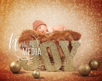 Newborn, Baby, Toddler, Child, in a Basket Photography Digital Backdrop Prop for Photographers with Gold Glitter JOY Letters Background