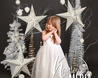 Baby, Toddler, Child, White and Silver Winter Tree Star Photography Digital Backdrop Prop for Photographers - Studio Scene