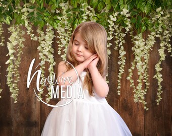Pretty Hanging White Flowers, Wood Photography Background, Flower Wall Studio Texture, JPG Digital Download, Wisteria Spring Child Portrait