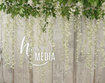 Hanging Wisteria Sinensis White Flowers on Wood Photography Background, Texture JPG Digital Download, Easter Spring Wedding Portrait