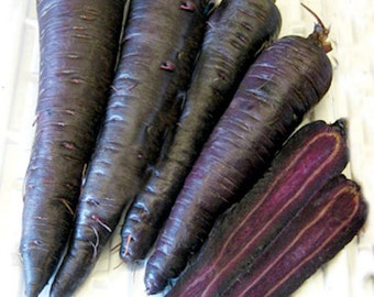 Rare Vegetable Purple Core Carrot - approx 100 seeds - UK SELLER