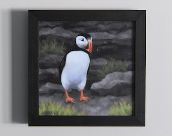 Puffin Painting Original Art Oil Painting Framed Wall Art by Sarah Becktel