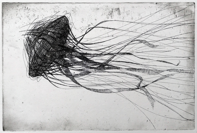 Qualle Radierung original schwarz und weiß-Kunstdruck