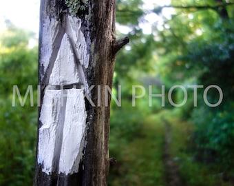 Appalachian Trail: Carved White Blaze