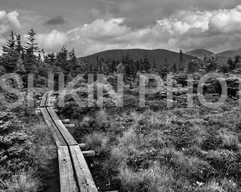 Appalachian Trail: Alpine Bridge, White Mountains, NH